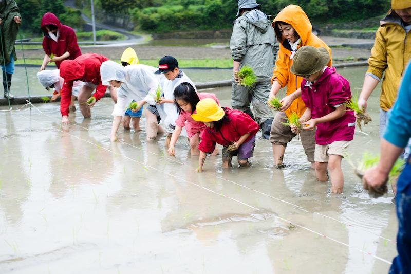 2016年神山町の鬼籠野町での子どもたちとの田植えの様子。