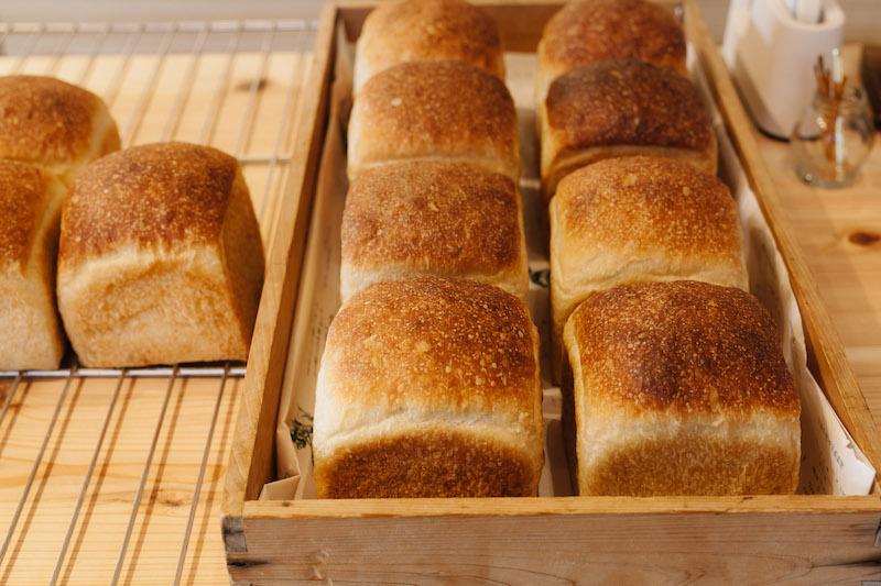 かまパンの食パンは、ちょっと「すっぱい」ときがあります。