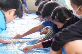 小学校5年生とのもち米づくりー5月17日:種を選別しようー