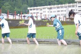 城西高校神山分校生活科の3年生と「一からお弁当」づくり、始まりました。