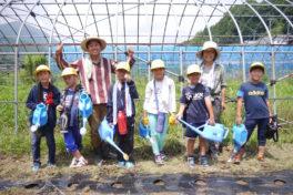 神領小学校3年生「大豆プロジェクト」①
