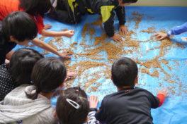 神山でつなぐ・つながる 5年生の「お米プロジェクト」①種の選別