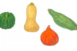 ちえちゃんの あんな野菜、こんな野菜<br/>「かぼちゃ」(2019年10月号)